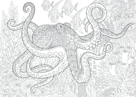 570x407 Sea Life Coloring Pages