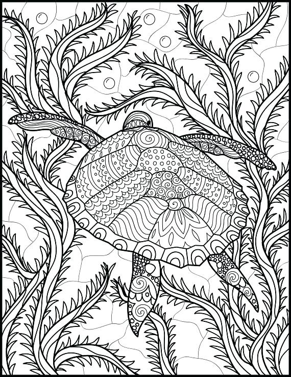 570x738 Sea Turtle Printable Coloring Pages Vanda