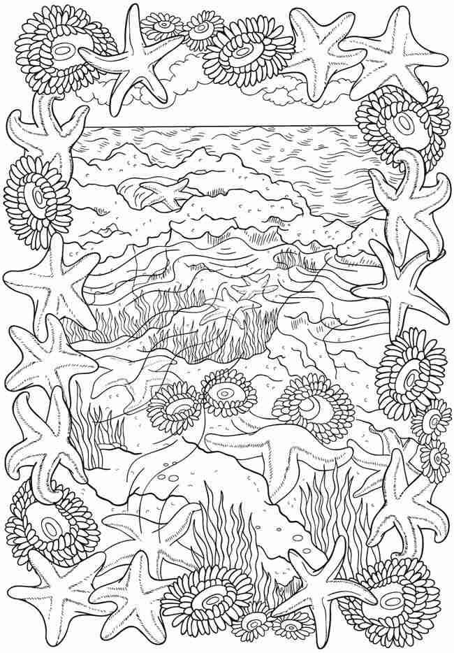 650x934 Adult Coloring Pages Ocean Olegratiy