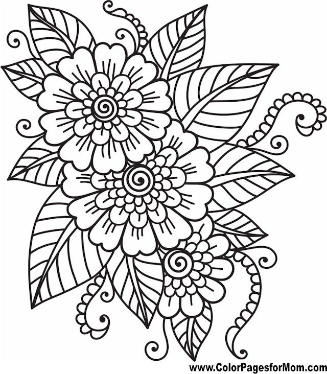 640x732 Flower Coloring Page