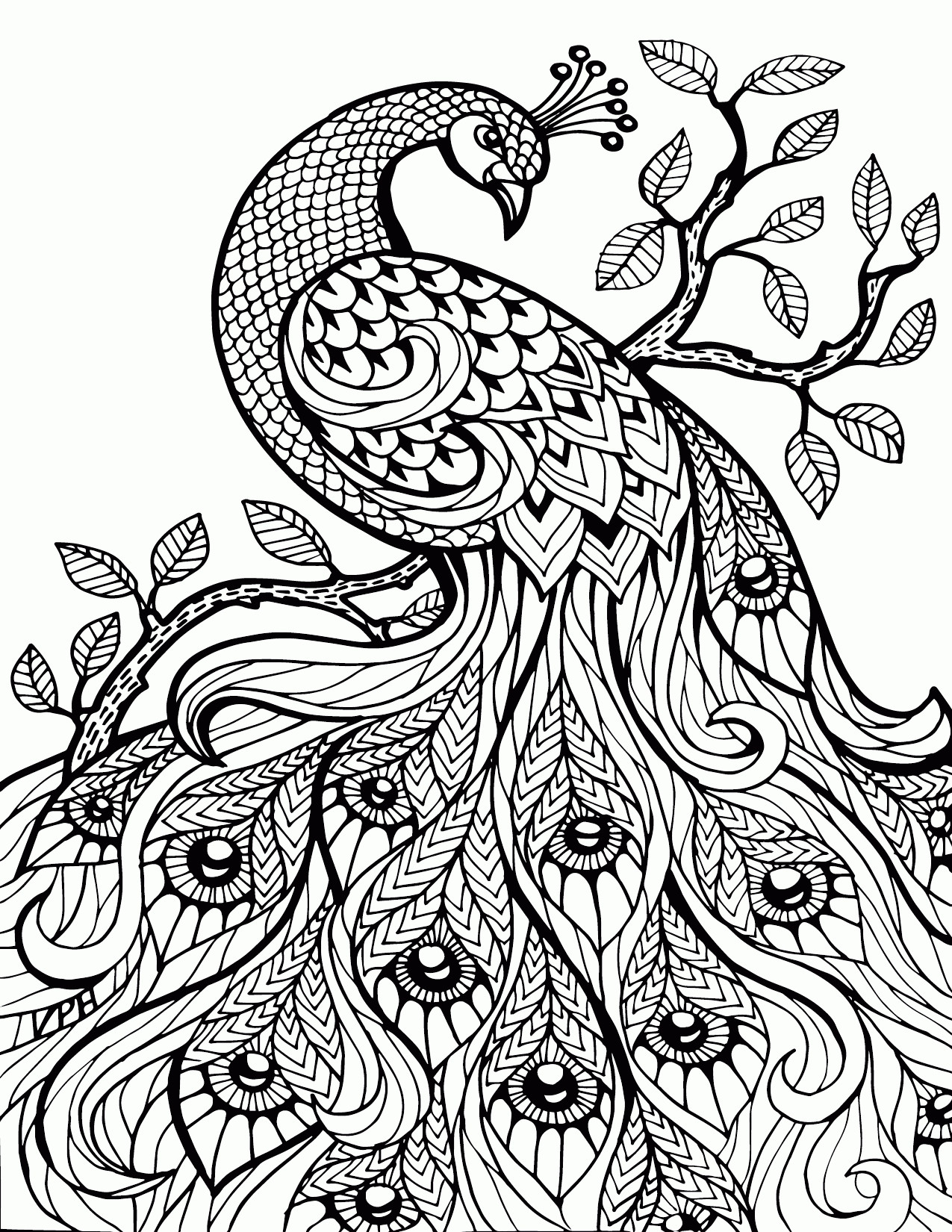 1275x1650 Printable Adult Coloring Pages Paisley H Stress Relief