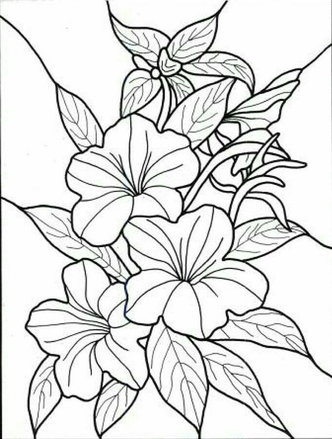 image about Free Printable Leather Tooling Patterns known as Grownup Coloring Web pages Routines Bouquets at