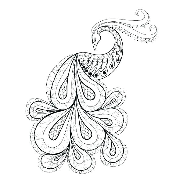 Adult Coloring Pages Peacock At Getdrawings Com Free For