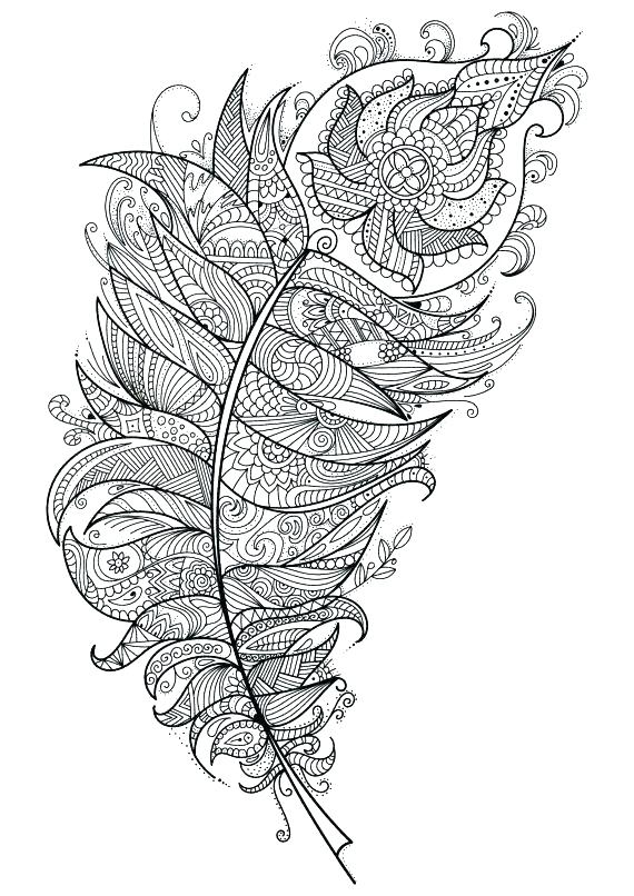 570x806 Feather Coloring Pages Cool Peacock Feather Coloring Page Feather