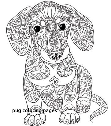 Adult Coloring Pages Pug