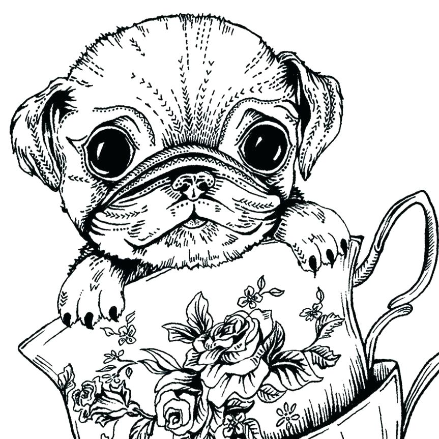 863x863 Pug Coloring Pages Pug Coloring Teacup Pug Greeting Card Coloring