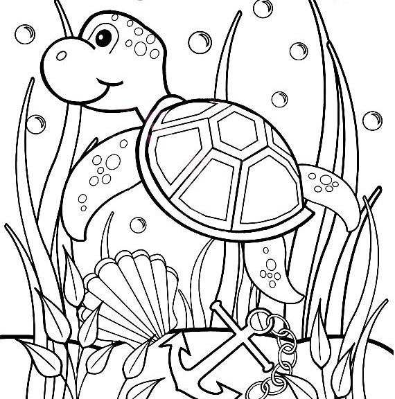 570x576 Bold Ideas Turtle Coloring Pages For Adults Printable Preschoolers