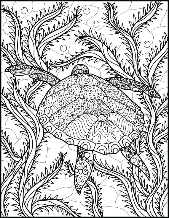 570x738 Ocean Coloring Pages For Adults Dolphin Color Page Dolphin
