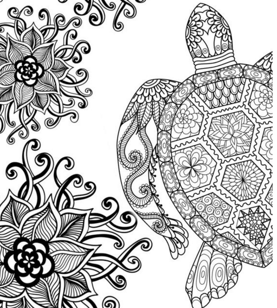 1140x1268 Revolutionary Turtle Coloring Pages For Adults At Turtle