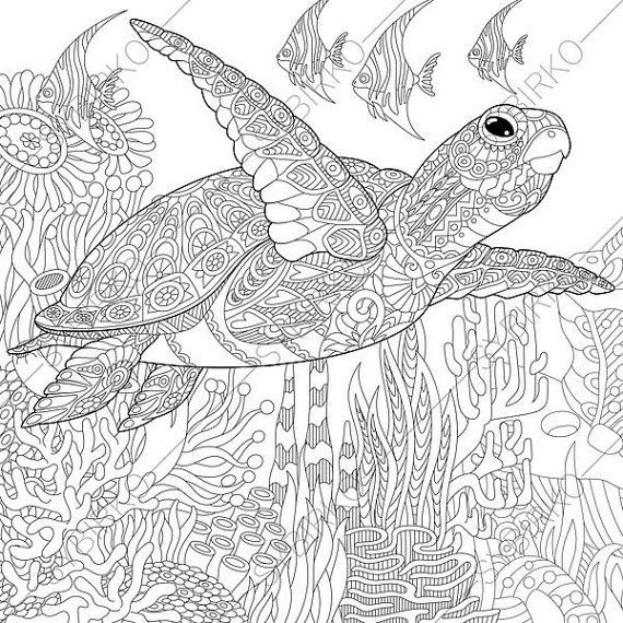 570x570 Turtle Adult Coloring Pages New Ocean World Turtle Coloring