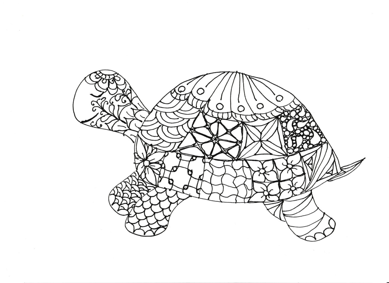 1500x1092 Adult Coloring Pages Turtle Artcommission Me Cool For Adults