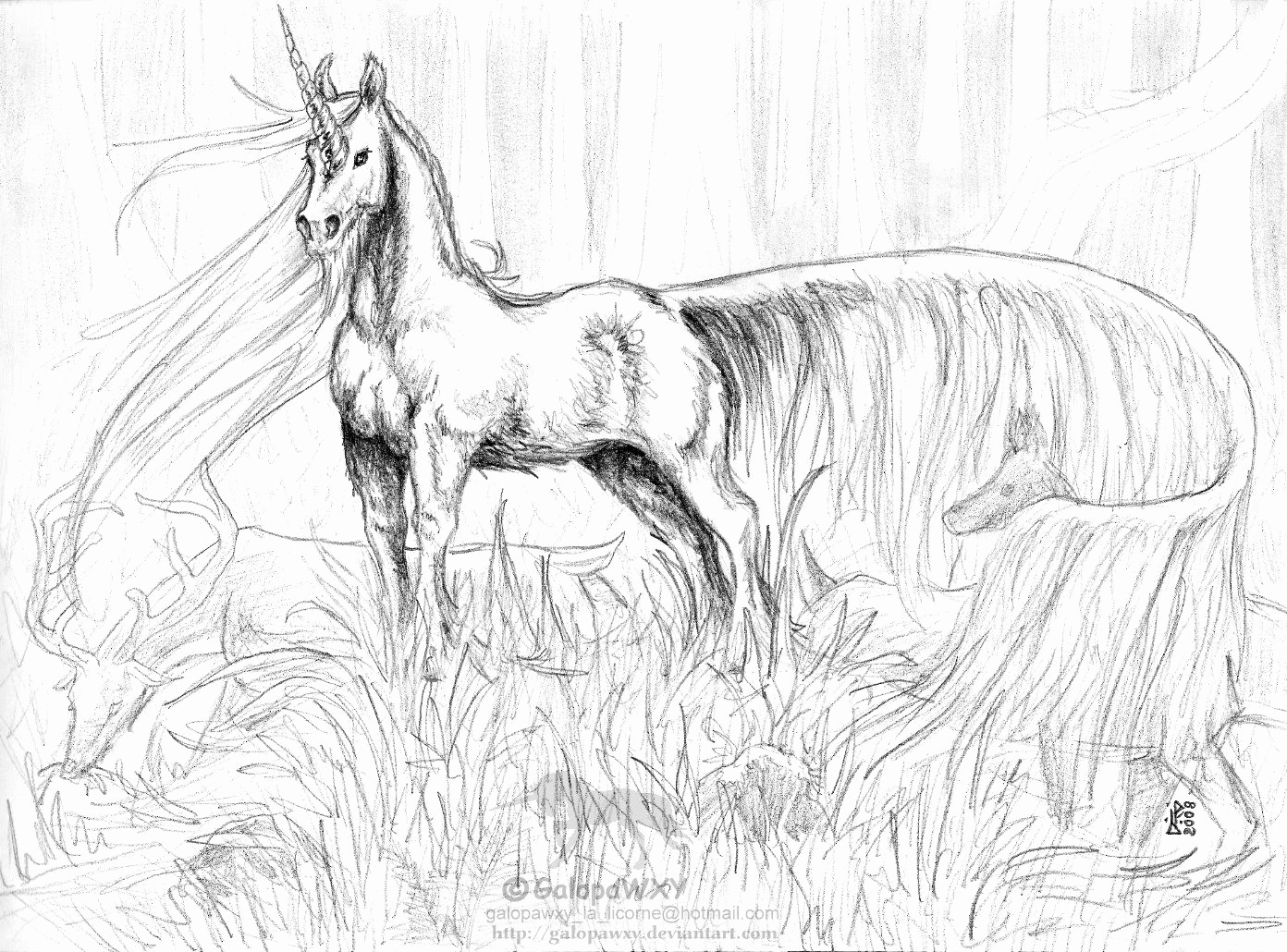 Adult Coloring Pages Unicorn At Getdrawings Free Download