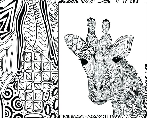 570x457 Giraffe Coloring Pages Printable Giraffe Coloring Pages Giraffe