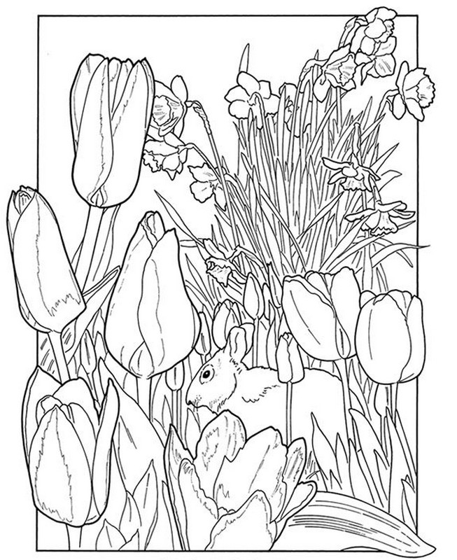 653x800 Spring Coloring Pages For Adults Pleasing Adult Coloring Pages