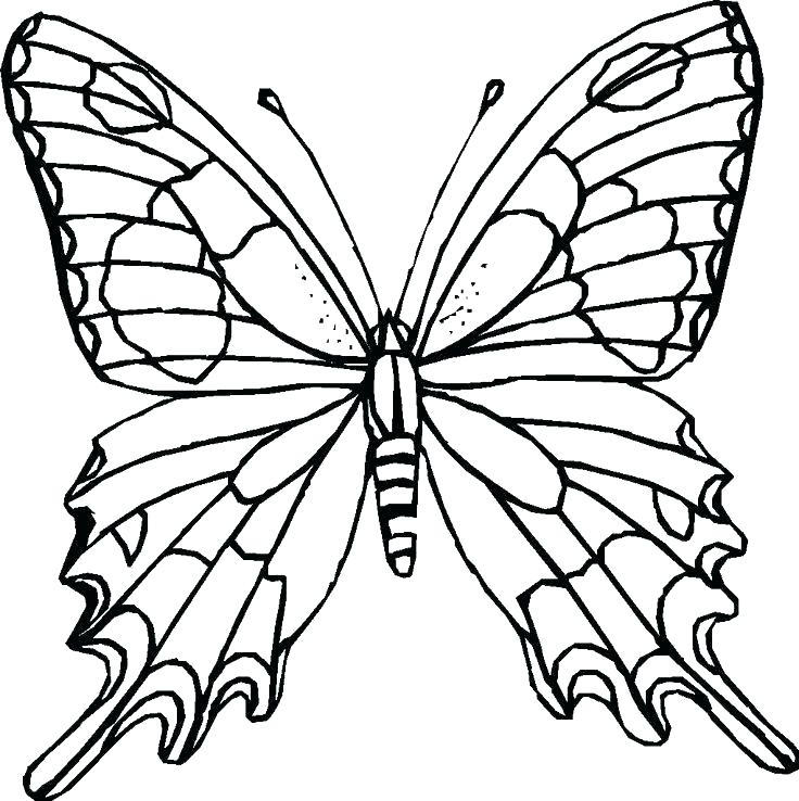 736x738 Spring Coloring Pages For Adults Spring Coloring Page Spring