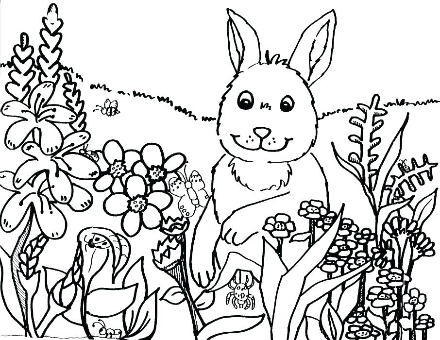 906x700 Spring Coloring Pages Adults Spring Coloring Pages