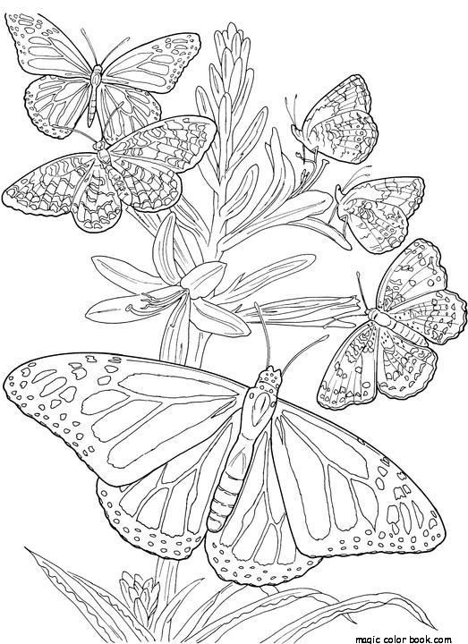523x720 Adult Coloring Pages Spring Flowers Printable