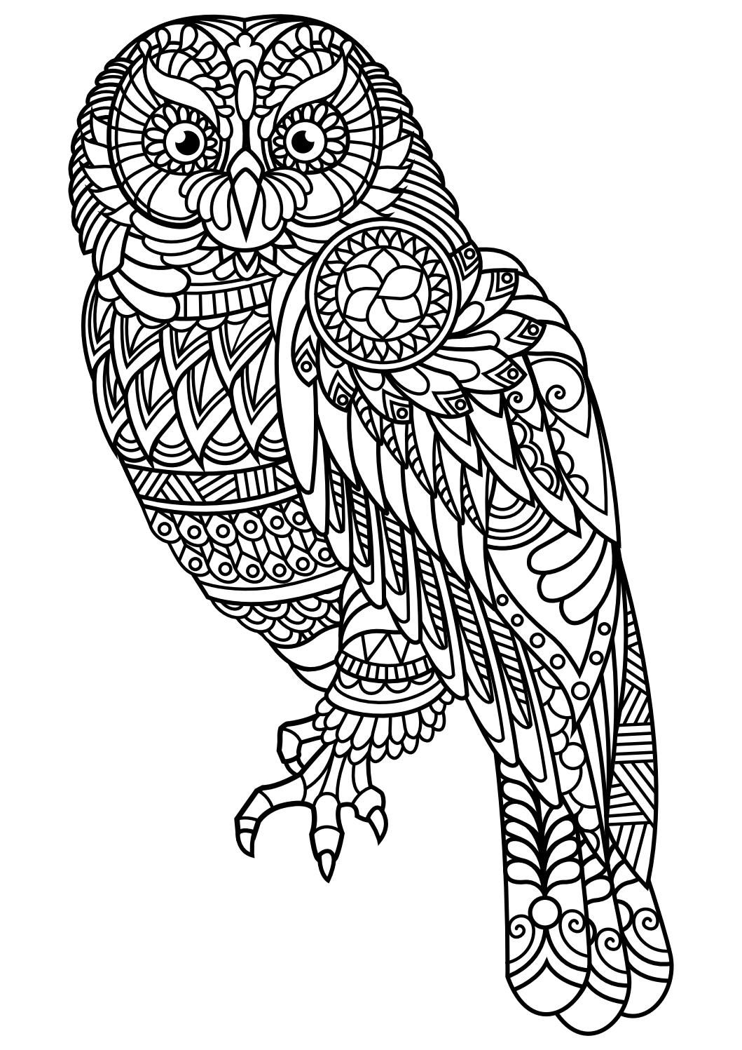 Adult Wolf Coloring Pages
