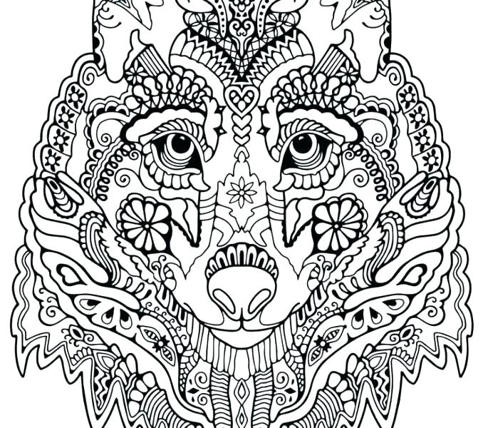 678x600 Winged Wolf Coloring Pages Lovely Wolf Coloring Pages For Adults