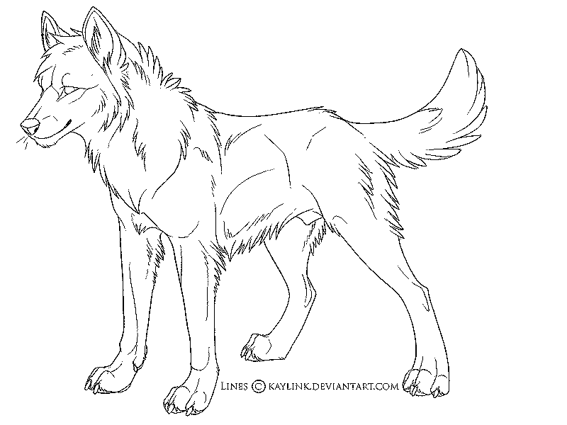 800x600 Anime Wolf Coloring Pages