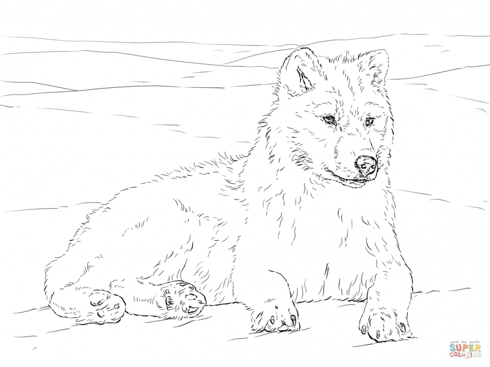 960x719 Get This Realistic Wolf Coloring Pages For Adults Free Printable