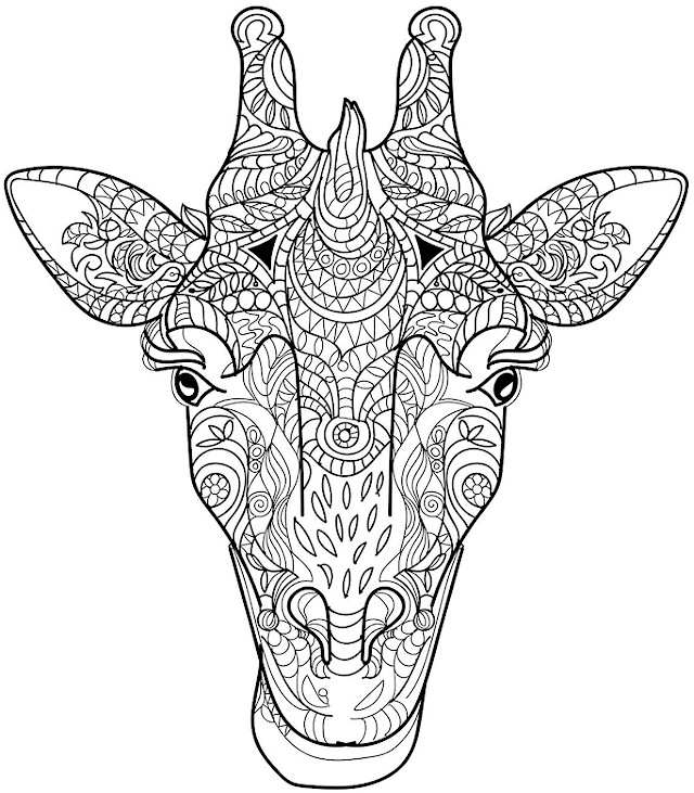 640x731 Stylist And Luxury Advanced Coloring Pages Giraffe Head