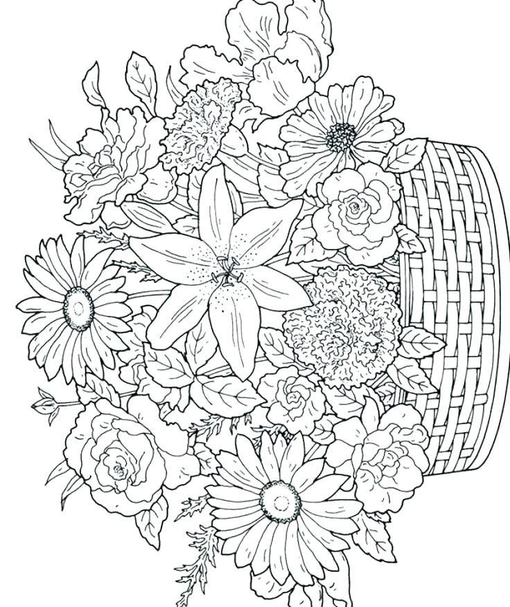 736x875 Advanced Coloring Pages Printable Advanced Coloring Pages