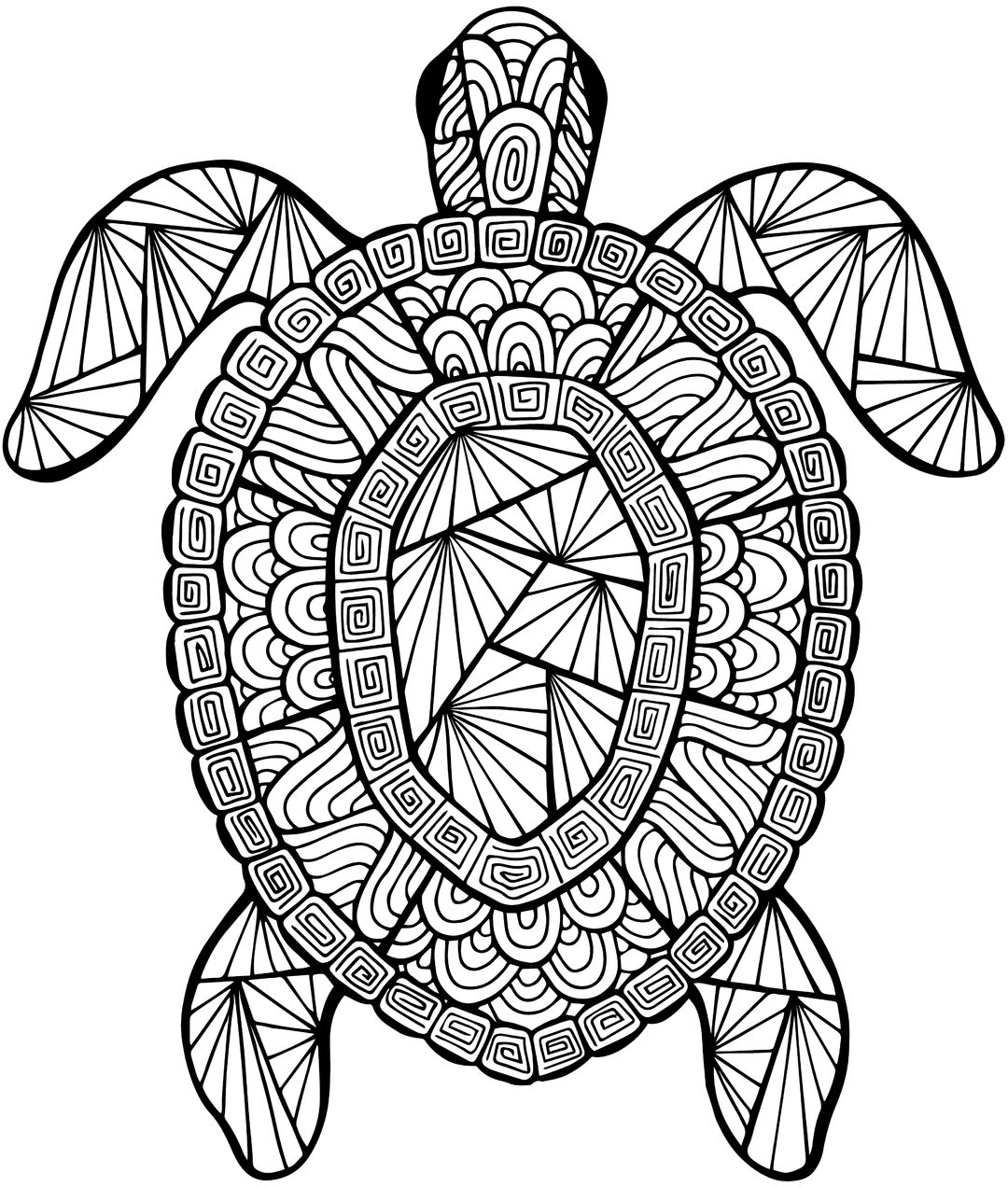 1080x1272 Detailed Sea Turtle Advanced Coloring Page A To Z Teacher Stuff