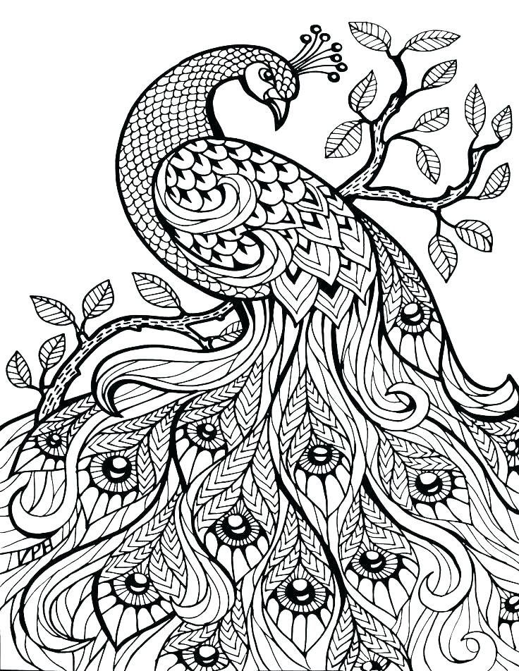 736x952 Free Printable Detailed Coloring Pages Free Printable Advanced