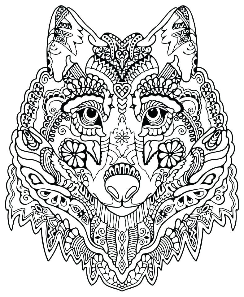 788x960 Advanced Coloring Pages