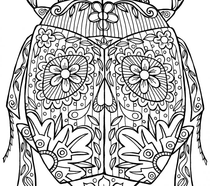 678x600 Advanced Coloring Pages Of Animals