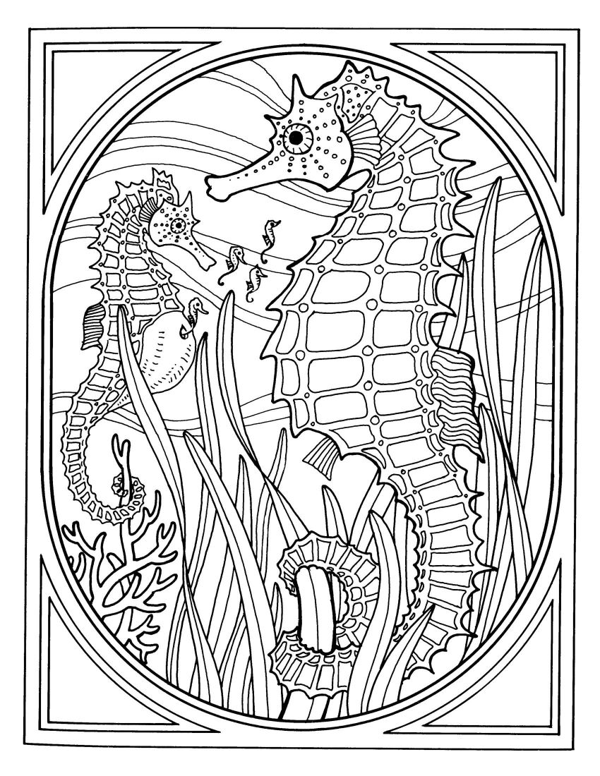 850x1100 Inspiring Advanced Coloring Pages Of Animals Many Interesting