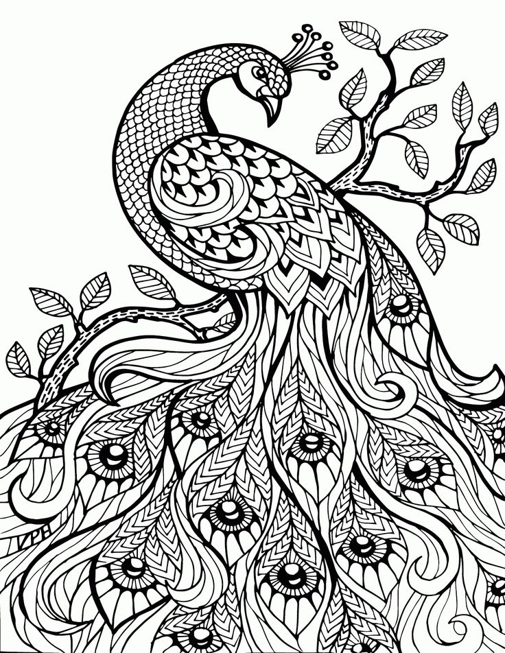 Advanced Online Coloring Pages at GetDrawings.com | Free for ...