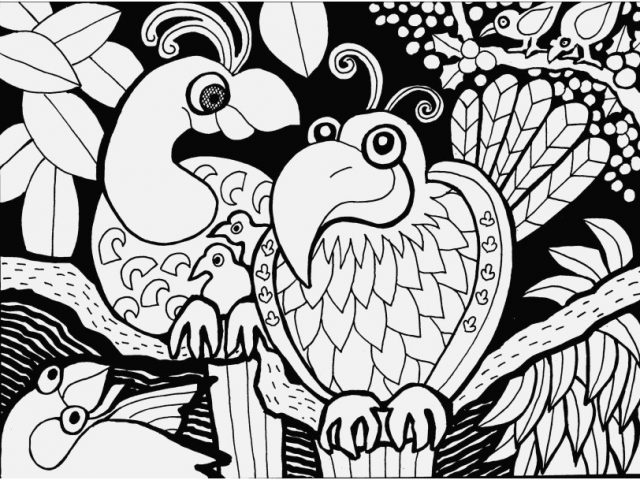 640x480 Africa Coloring Pages Concept Africa Parrots Africa Coloring Pages