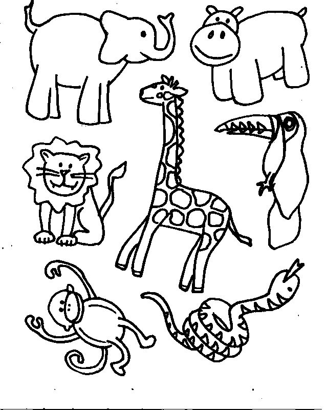 637x800 African Animals Coloring Pages