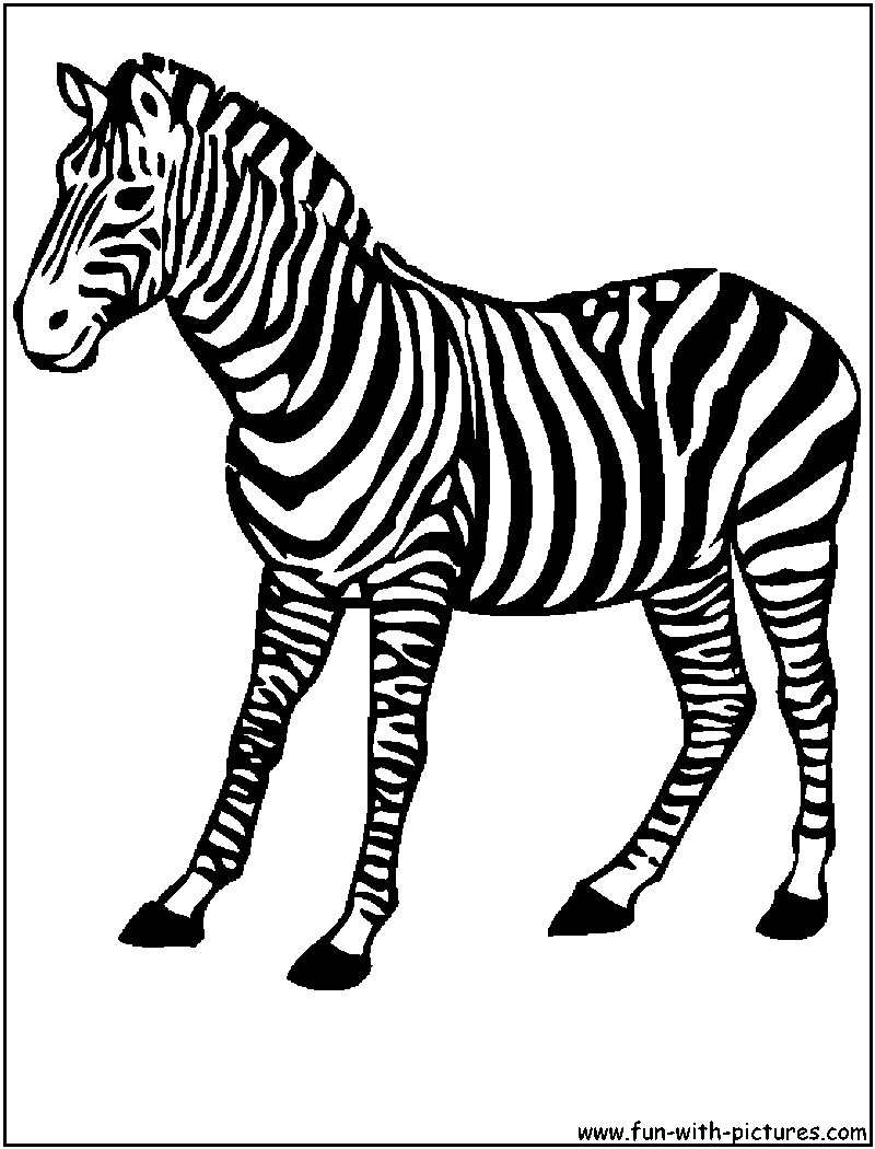 800x1050 African Animals Coloring Pages Printable Colouring Pages
