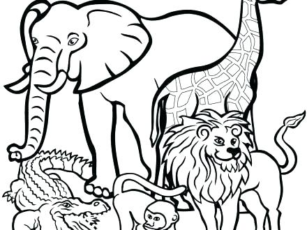 440x330 African Animal Coloring Pages Animal Coloring Pages Printable Kids