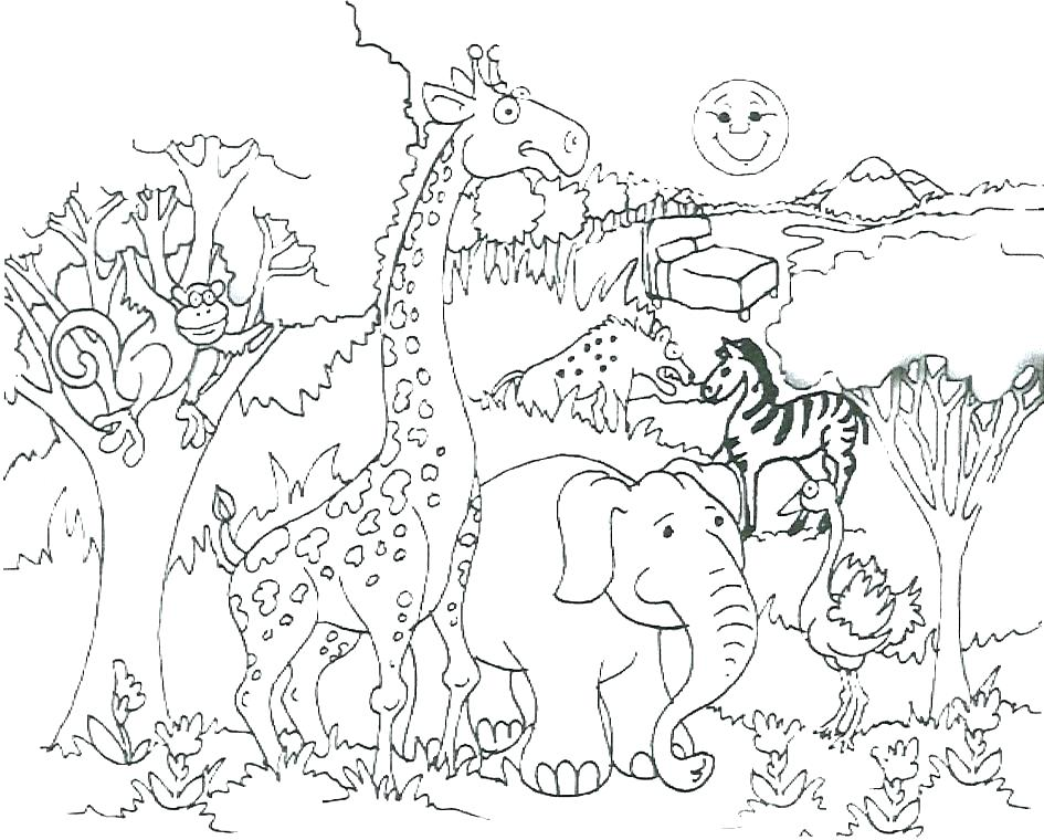 The Best Free Savanna Coloring Page Images Download From 78 Free Coloring Pages Of Savanna At Getdrawings