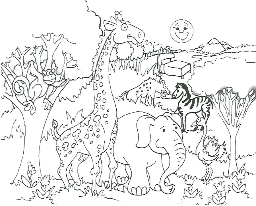900x724 Safari Animals Coloring Pages Free Printable Jungle Animal