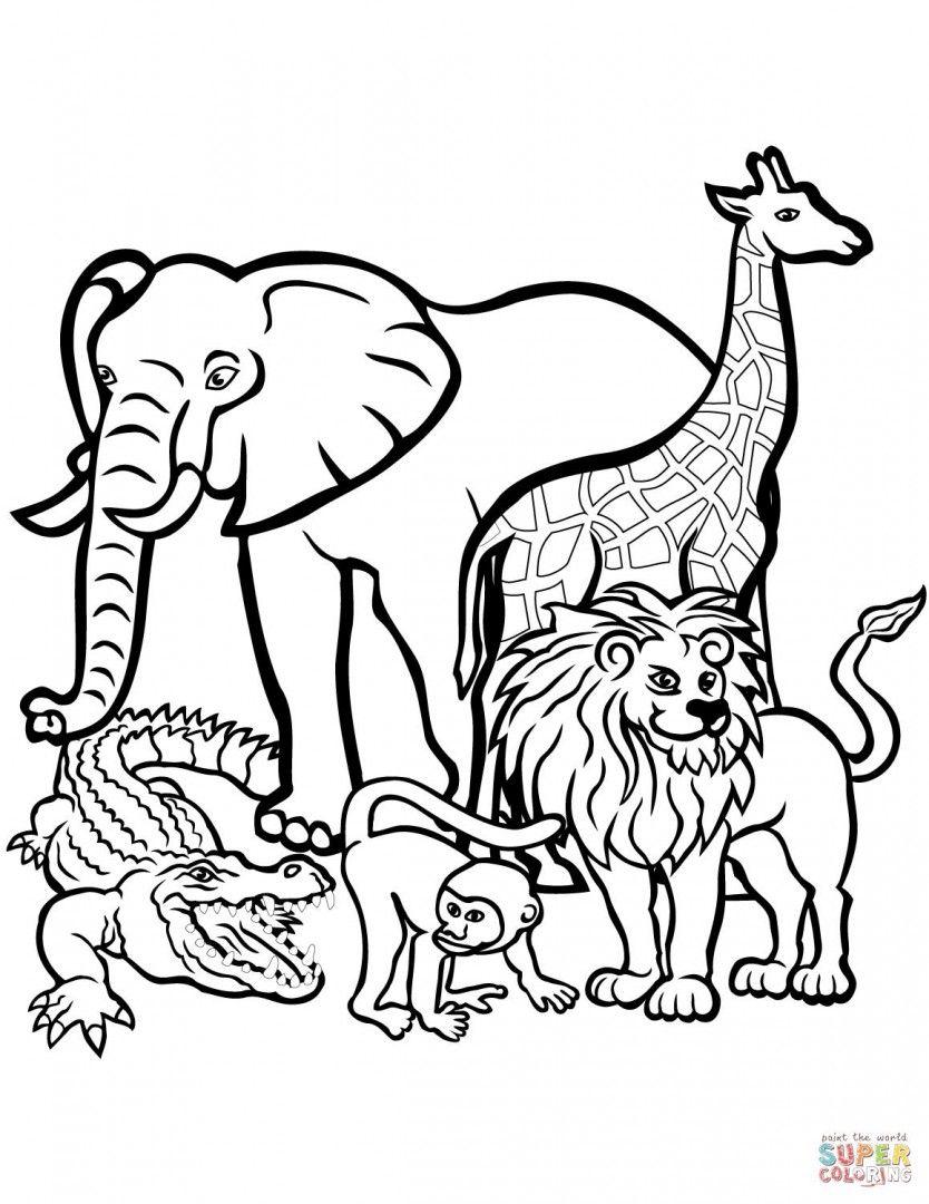 834x1080 Safari Coloring Page Worksheets, Kindergarten And Safari Animals