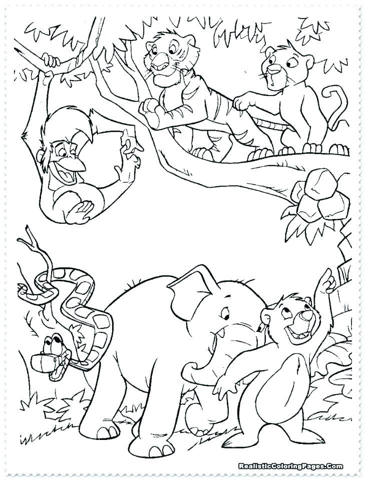 729x959 Safari Coloring Pages Safari Animal Safari Animal Coloring Pages