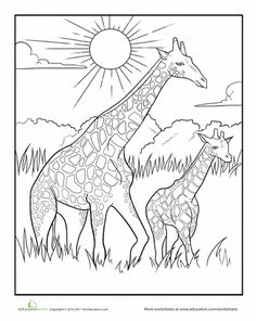 african savanna coloring page at getdrawings free download. Black Bedroom Furniture Sets. Home Design Ideas