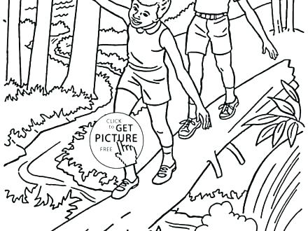 440x330 Forest Animals Coloring Pages Trees Coloring Pages Oak Tree