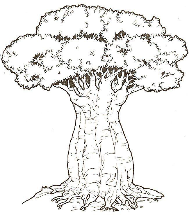 650x737 Whirls And Twirls Around The World Kenya Crafts Baobab Trees
