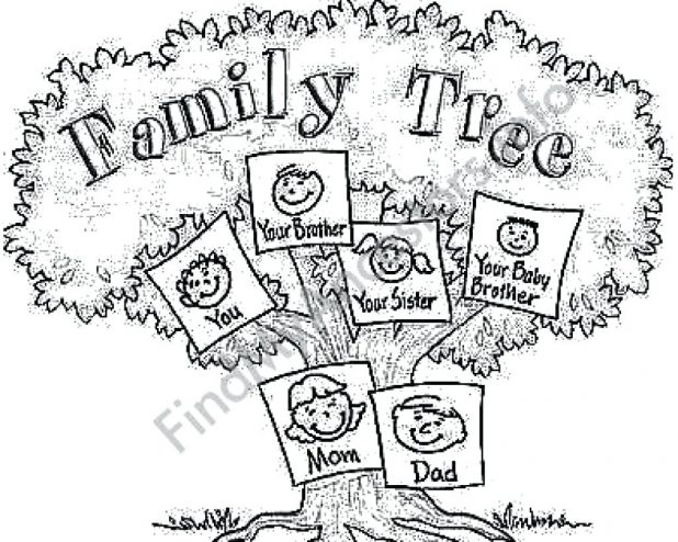 618x494 Family Tree Coloring