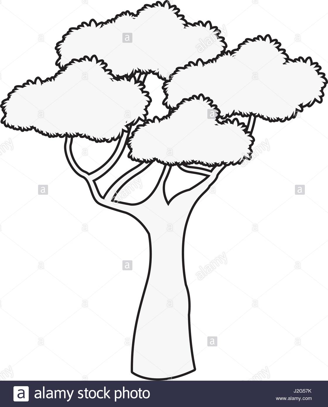 1120x1390 Outline Image Of Tree