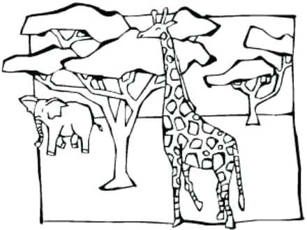 440x330 African Savanna Colouring Pages Coloring Pics Photos Animals Page