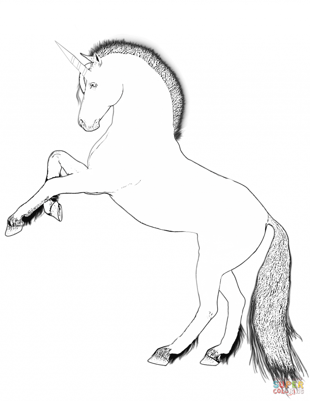 1024x1325 Coloring Book And Pages Fabulous Unicorn Coloring Pages