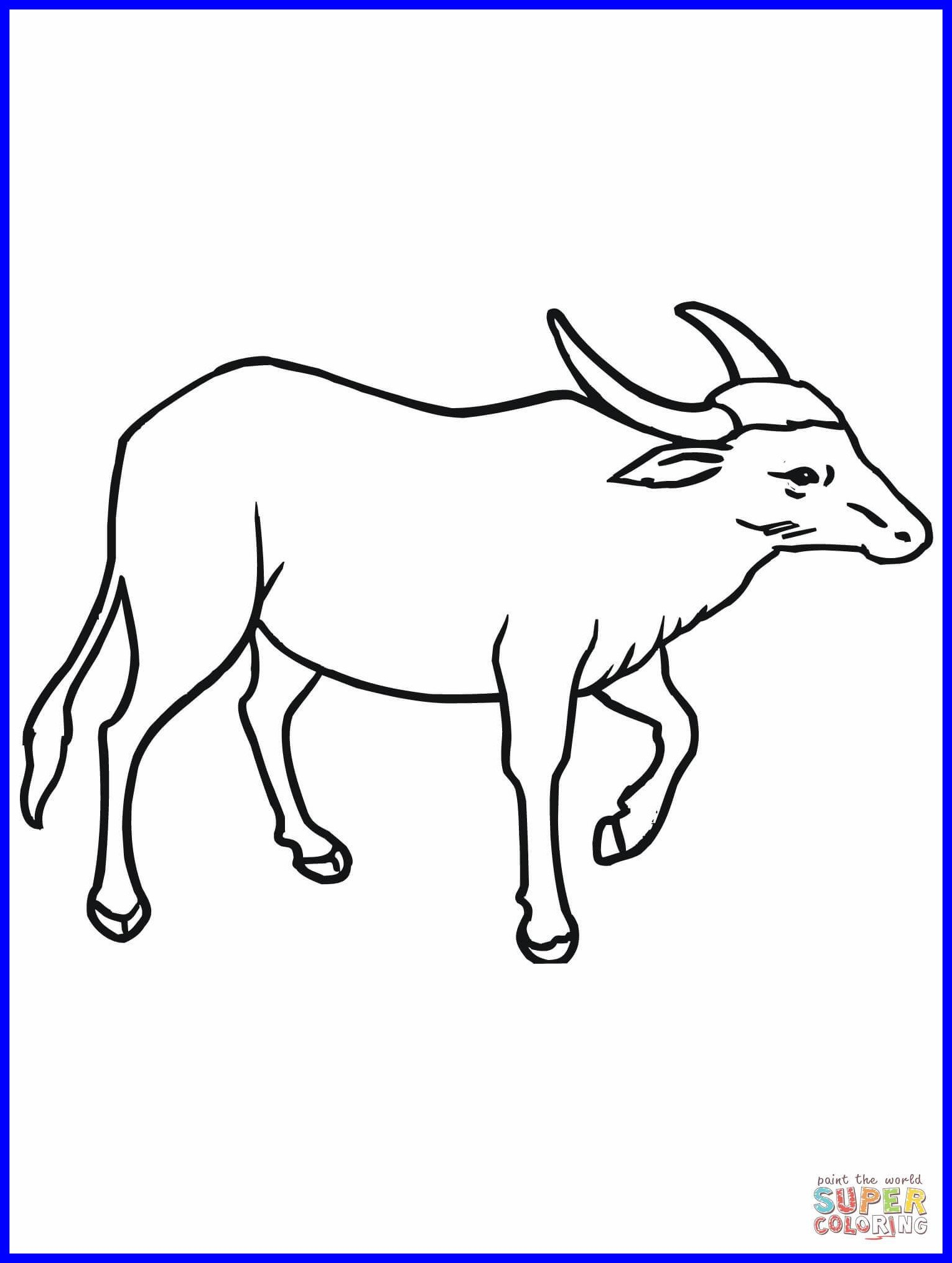 1530x2030 The Best Unusual Buffalo Coloring Printable Page Pics Of Water