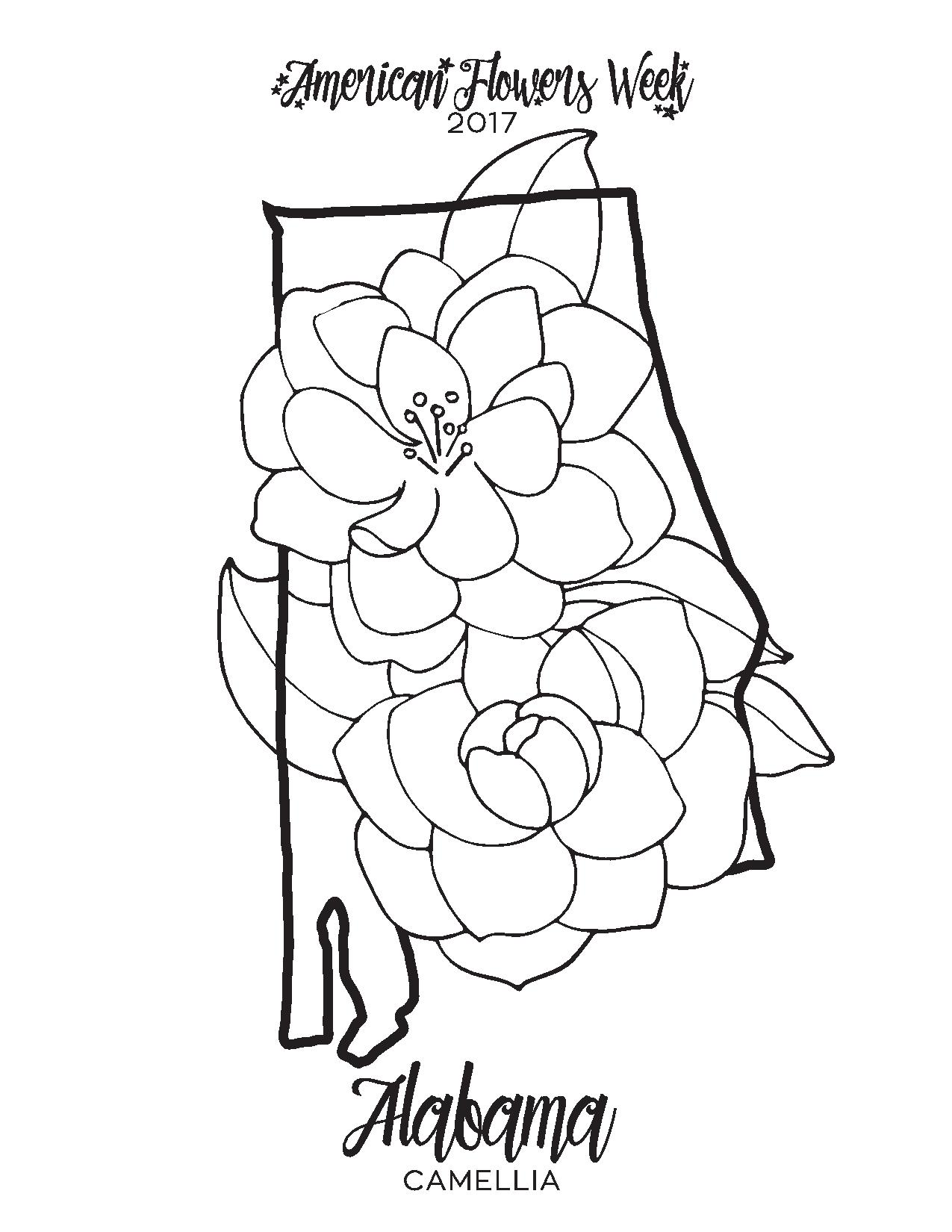 1275x1650 State Flowers Free Coloring Pages American Flowers Week